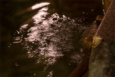 五感で感じる温泉